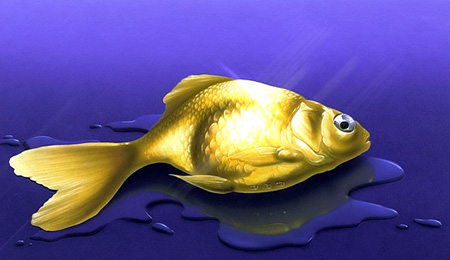 06goldfish